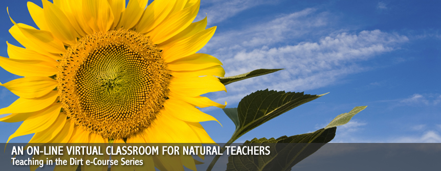 An on-line virtual classroom for Natural Teachers